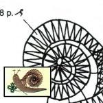 Pattern slug