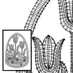 Klöppelbrief Tulpe mit Küken