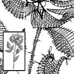Klöppelbrief Rose