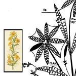 Pattern Bouquet Sunhat