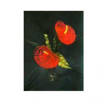 Blumenstiel Anthurie