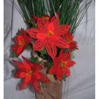 Klöppelbrief - Geklöppelte Blumen - Weihnachtsstern