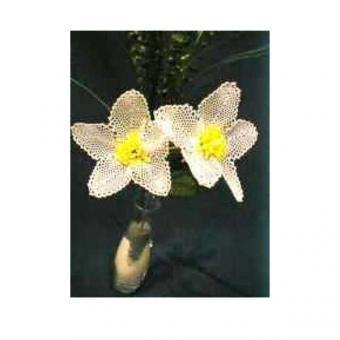Blumenstiel Christrose