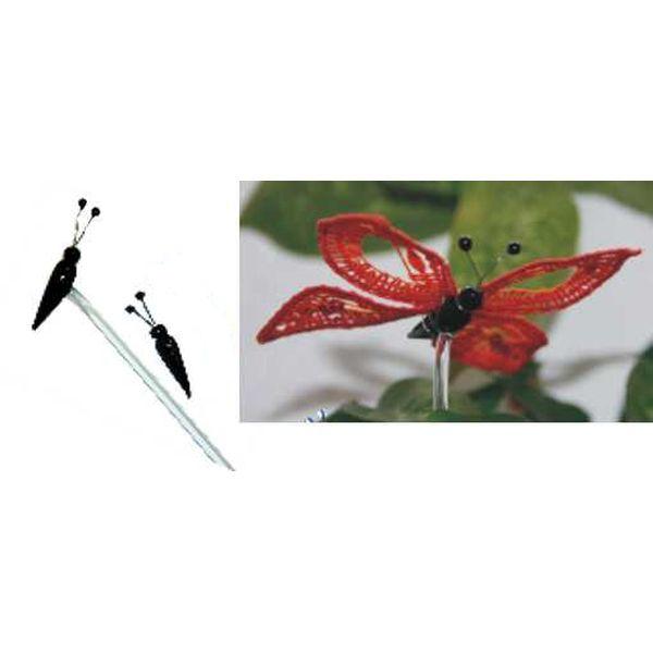 Glaskörper Schmetterling