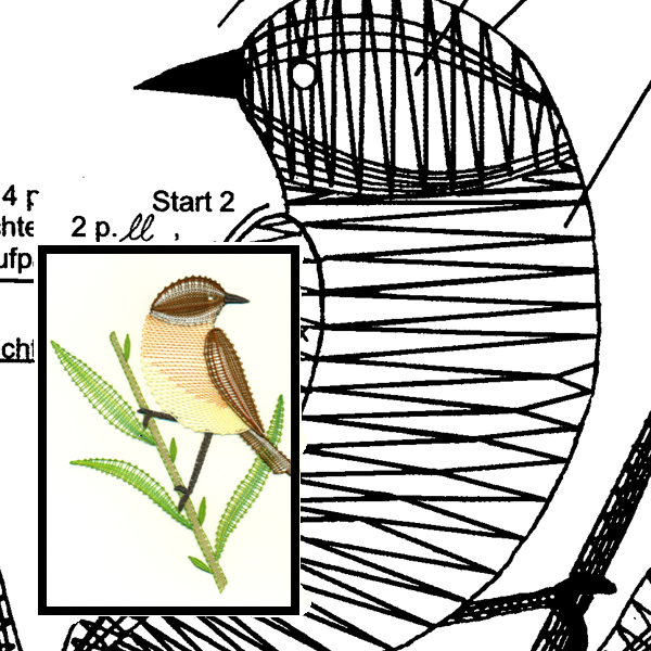 Pattern whinchat