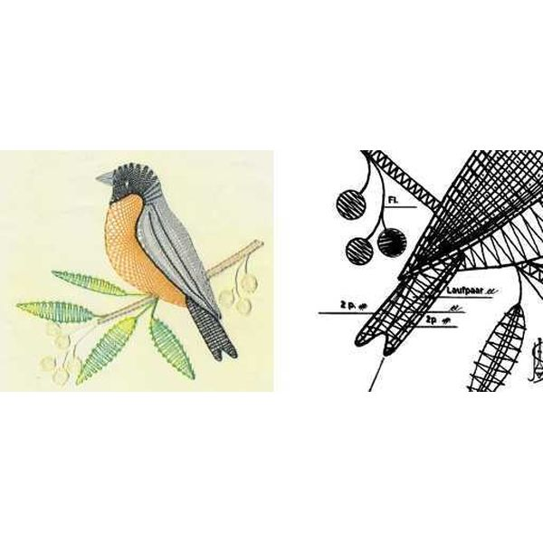 Pattern Bullfinch