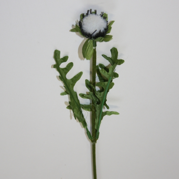 Blumenstiel Mohnblume
