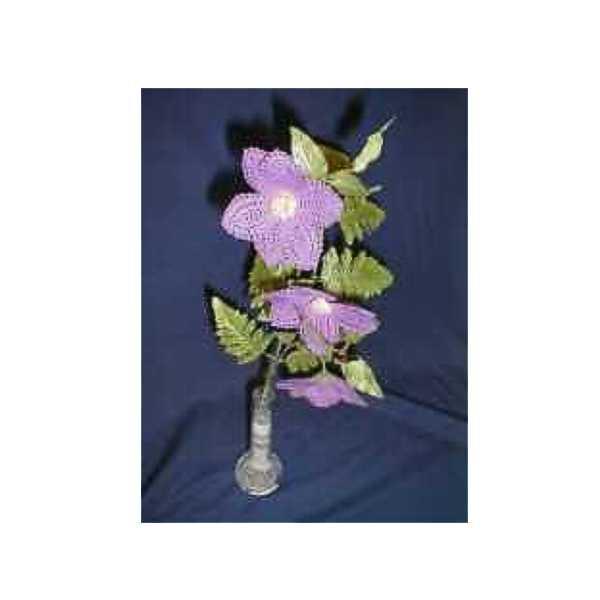 Blumenstiel Clematis