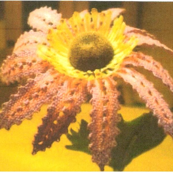Klöppelbrief - Geklöppelte Blumen - Gerbera