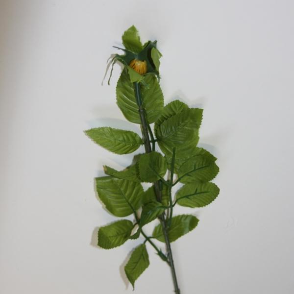 Blumenstiel Rose