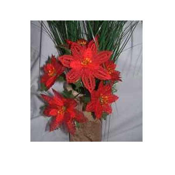 Blumenstiel  Weihnachtsstern