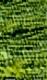 hellgrün/dunkelgrün (715)